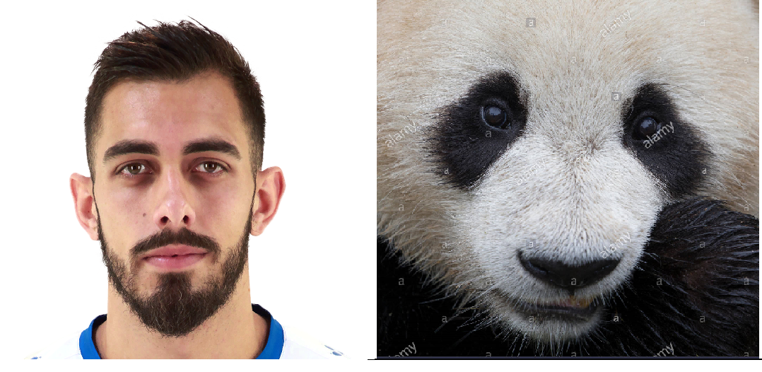 Espanyol player Borja Iglesias looks like a panda.